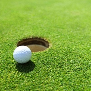 Closeup of a golf ball on the greens